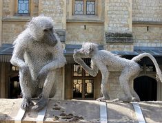 Chicken wire Baboons by Kendra Haste at the Tower of London, on site from 2011 to 2021. Aren't they awesome?