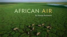 beauty africa national geographic - Pesquisa Google