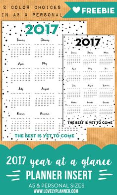 2017 year at a glance Free printable planner inserts for A5 & Personal size planners