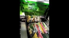 Multipack Chips flow wrapping machine,Multi-pouch flow wrapper machine