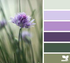 Farb- und Stilberatung mit http://www.farben-reich.com/ chive blossom