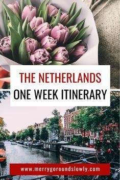 European Travel Tips, European Destination, Europe Travel Guide, Travel Guides, Traveling Tips, Travelling, Backpacking Europe, Amsterdam Travel, Amsterdam Living