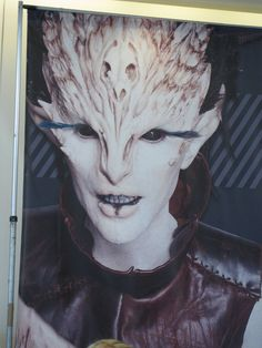 One of the lobby posters for the IMATS convention...