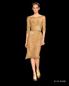 #39 of the ELIE SAAB - Haute Couture - Fall Winter 2012-2013 Collection