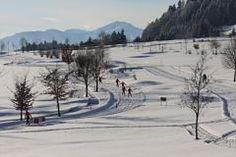 Schwaigsloipe Sport, Outdoor, Long Distance, Outdoors, Deporte, Sports, The Great Outdoors