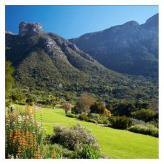 Kirstenbosch Botanical Gardens — at Cape Town, South Africa.