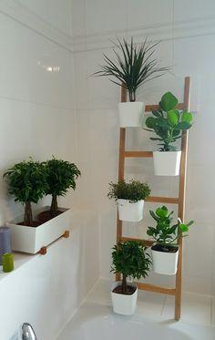 details about kitchen herb window planter box wooden trough metal plant pots indoor garden. Black Bedroom Furniture Sets. Home Design Ideas