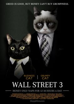 Movies That Would Be Way Better If They Starred Grumpy Cat Grumpy Cat Movie, Grumpy Cat Humor, Grumpy Cats, Grumpy Dwarf, Business Cat, Cat Whisperer, F2 Savannah Cat, Cat Wall, Funny Stuff