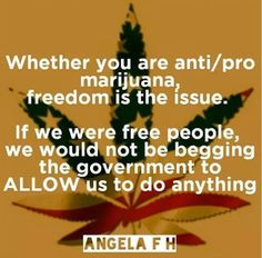 Whether you are anti/pro marijuana, freedom is the issue. If we were free people, we would not be begging the government to ALLOW us to do anything.