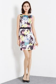 Check out this Floral Open Back Dress from Warehouse. Formal Dresses For Men, Dresses For Work, Warehouse Wedding, Open Back Dresses, Knee Length Dresses, Dress Backs, Homecoming Dresses, High Neck Dress, Gowns