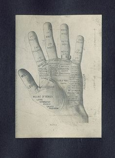 Dental Hand Silhouette Gift Album by W. H. Whitslar (Cleveland, Ohio, ca. 1908). Album of gelatin silver photographs, including this palmistry diagram.