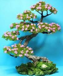 Résultats de recherche d'images pour «bonsai de pedreria»