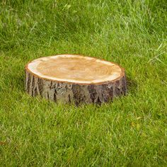 How to Rot a Stump for Easy Removal - DIY - MOTHER EARTH NEWS. Torruella's.......plus.......