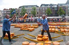 Fliegender Käse auf dem Käsemarkt in Alkmaar