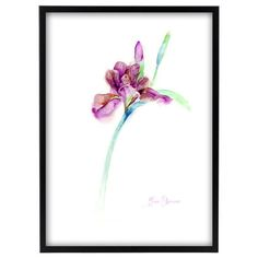 watercolor flower iris print purple painting iris flower