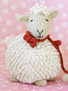 Spud & Chloë —  sheep.
