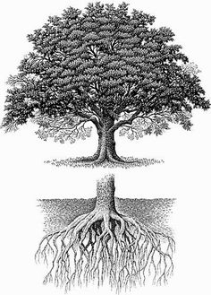 The ones with roots, the ones that run deep, the ones capable of taking the sun will be in for long.