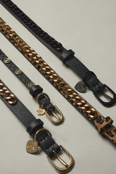 Collar And Leash, Collars, Bulldog Puppies For Sale, Pet Accessories, The Struts, Aldo, Catwalk, Dog Cat, Personalized Items