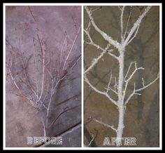 DIY Frosted Branches: branches, white paint, spray adhesive, twinkle flakes and epsom salt. Great! #winter #holidays #christmas #decoration
