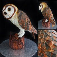 Tasmanian Masked Owl Cake by cakecrumbs Yes this is a cake