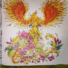 Colouring Coloring Books Adult Color Schemes Phoenix Art Work Doodles