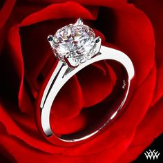 """White Gold """"Full of Surprises"""" Solitaire Engagement Ring"""