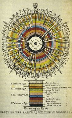 earth's crust with the evolutionary history of the species    j.l. agassiz - 1851