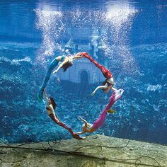 Really want to check out this its a mermaid show at Weeki Wachee Springs State Park in Fl they have canoeing, tubing, a kids water park sounds so neat