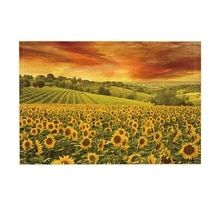 Red sunset over the rolling sunflowers and sunflower fields of Tuscany, Italy Art Print by JA(c)anpaul Ferro - X-Small Artwork Prints, Fine Art Prints, Red Sunset, Italy Art, Sunflower Fields, Buy Frames, Tuscany, Wild Flowers, Planting Flowers