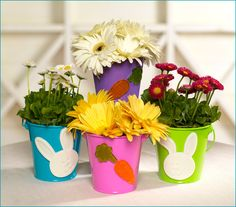 Cute and cheap Easter pails for flower arrangements.