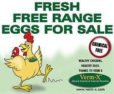 eggs for sale sign | Eggs for Sale Sign