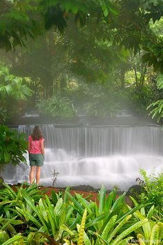 Tabacon Hot Springs Resort & Spa, Costa Rica