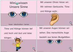 miniwissen-unsere-sinne - Zaubereinmaleins - DesignBlog