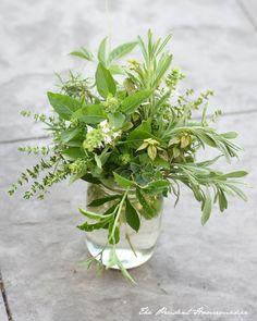 Herb Arrangement The Prudent Homemaker