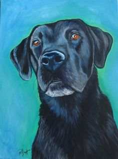 Original pet portraits Black Lab