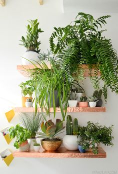 Loft Living Room & Entryway Makeover Reveal!  Love these shelves and the plants.  Too good.