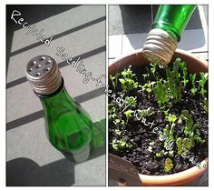 """My hubby made me a little """"watering can"""" so we can water our baby plants without drowning them. You just have to shake the bottle a little to water your pots. Try it!"""