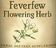 FEVERFEW FLOWERING HERB Tincture for Fever Hot Head Relief Liquid Herbal Extract Flu Aid
