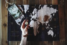 "Personal favorite: @samciurdar's vintage looking shot featuring ""Old World Map Blue"" by Wild Apple Portfolio."