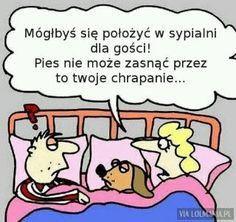 DecoArt24.pl