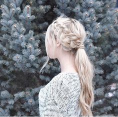 Winter braids