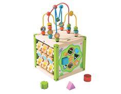 EVEREARTH Mon Premier Cube d'Activités - Dès 18 mois