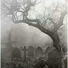 death tree Black and White dark dead cross goth gothic cemetery disturbing graveyard gravestone Dark Side, Old Cemeteries, Graveyards, Arte Obscura, Cemetery Art, Dark Places, Haunted Places, Belle Photo, Dark Art