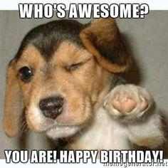 whos-awesome-you-are-happy-birthday.jpg (400×400)
