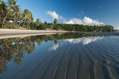 Ilha de Boipeba - no Município de Cairu , na Bahia, possui 6 praias. Brasil. Vizinha à Ilha de Tinharé(Morro de São Paulo).