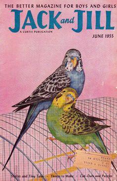 0caeb9ea6e retro budgies Jack and Jill 1955  parrotcagecover Budgie Parakeet