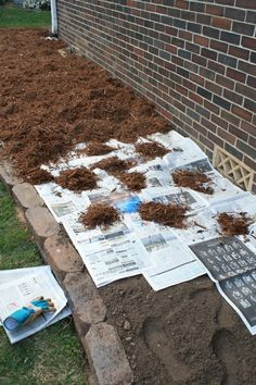 Great Idea!  Put the newspaper over the dirt 3-4 pages thick and then covered it with mulch. The newspaper will prevent any grass and weed seeds from germinating, but unlike fabric, it will decompose after about 18 months. By that time, any grass and weed seeds that were present in the soil on planting will be dead. Its green, its cheaper than fabric, and when you decide to remove or redesign the bed later on, you will not have the headache you would with fabric.