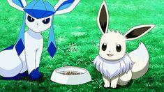 pokemon my gifs MY EDIT eevee glaceon my creations shiny pokemon ...
