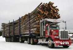 Peterbilt 357 logging truck, 338,000 lb. load.