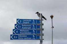 #lähiöhelvetti eli puhtoinen lähiöni: Surullisella kummitustalo-kiertueella ja syksyisessä metsässä LOTRailemassa örkkien kera. Pepsi, Helsinki, Sweet Home, House Beautiful